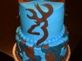 2015 Cakes (105)
