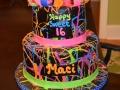 2015 Cakes (24)