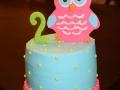 2015 Cakes (91)