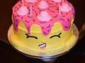 Cake_2016 (485)