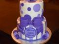 2015 Cakes (190)