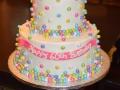 Cake_2016 (241)