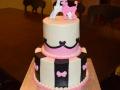 Cakes 2017 (2427)