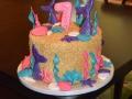 Cakes 2017 (143)