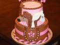 Cakes 2017 (930)